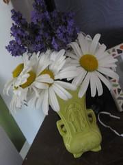Daisies and Lavendar