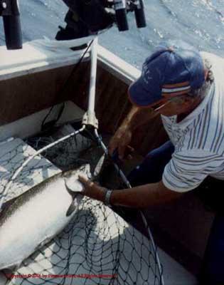 1988_LakeMichigan_Salmon