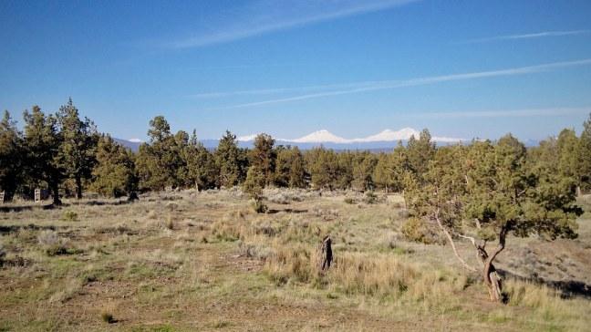 High desert scenery