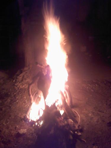 Holi on fire