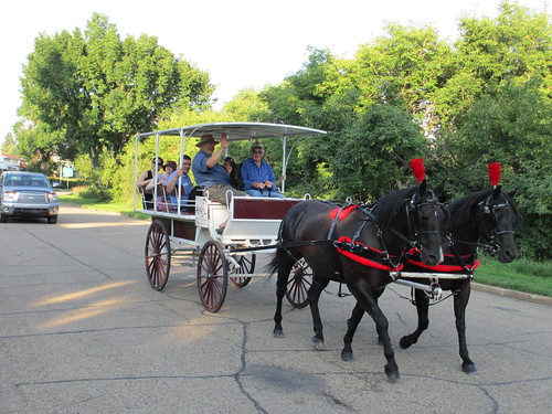 Highlands Horse & Carriage Ride