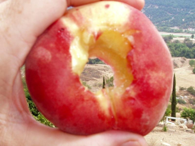 Donut_peach_hole.JPG