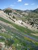Mineral Basin -- off the East ridge