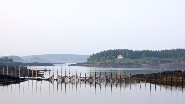 Fish farms at low tide in the Bay of Fundy