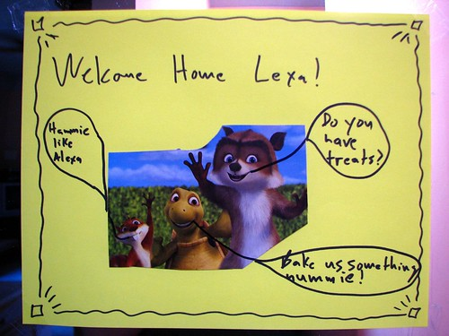 Welcome Home Lexa!