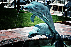 Dolphin Sculpture lomo 1