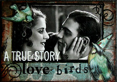A True Story of Lovebirds