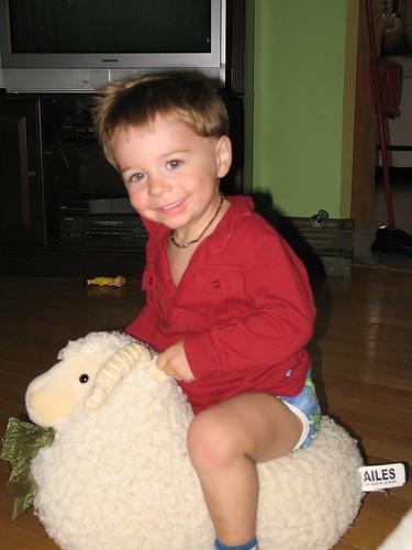 Ride em Sheep!