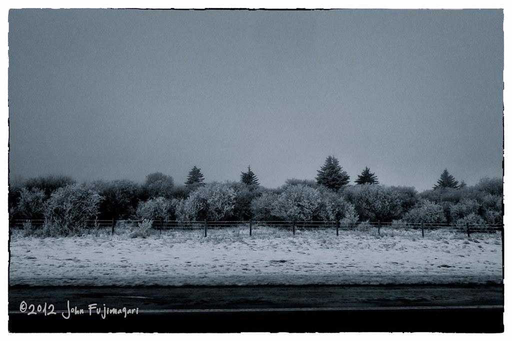 Roadside Winter
