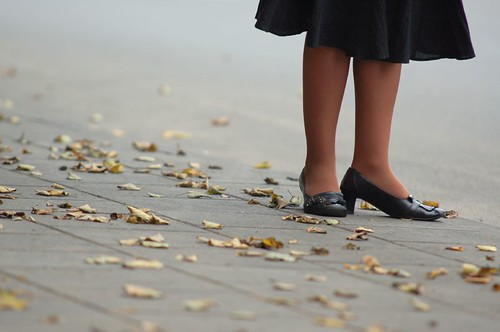Autumn leaves and legs