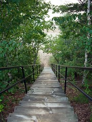 Image of stairs leading down to a beach