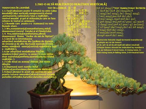 老子 道德經 Lao Tzu ,Tao Te Ching1, MIRAHORIAN