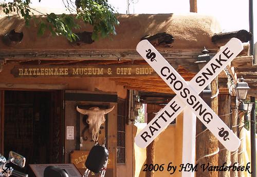 Rattlesnake Crossing!!?