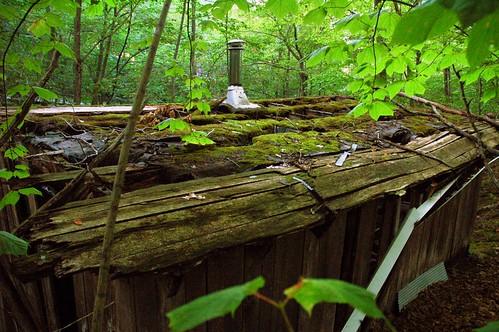 Abandoned Cabin, Cross Village MI