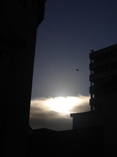 a morning.. full of Hope