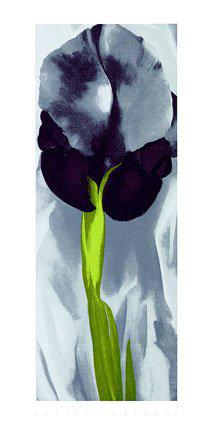 Dark-Iris-I-1927
