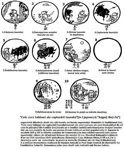 """Câteva fragmente din """"Omul în căutarea sensului vieţii"""", de Viktor E. Frankl – [ Marginalia ] etc."""