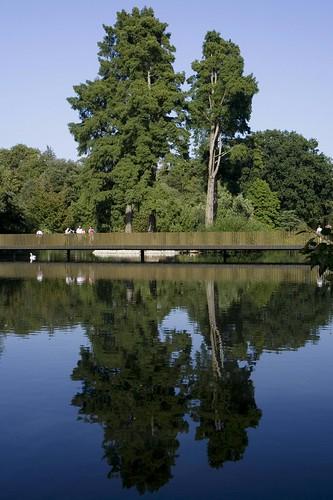 Sackler Crossing reflections