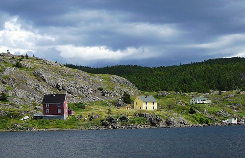 Lower Harbour houses