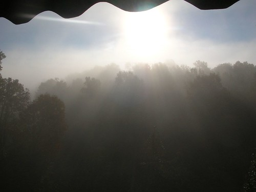 Foggy Morning 01