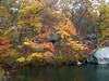 Lincoln Woods, Rhode Island - 72