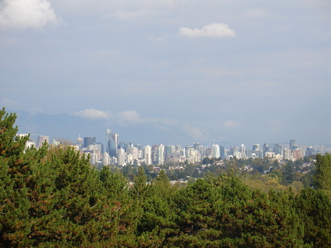 Downtown from Trimble Park