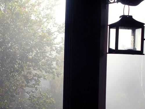Foggy Morning 04