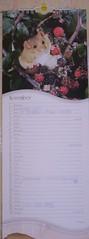 nov calendar 1