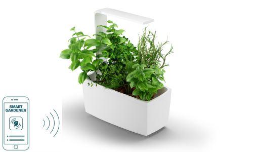 Potager d'intérieur Tregren Connecté 6 plantes Blanc