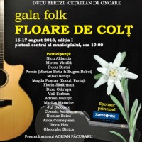 Gala Folk Floare de Colț la Sighet