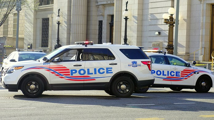 Dc Carjackers Goal Grandmother As Crime Skyrockets: 'I Do Not Even Wish To Reside Right Here'