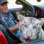 Remaining animals at 'Tiger King' zoo to be turned over to Justice Department 💥👩💥