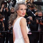 Andie MacDowell's managers didn't want her to go gray -- but she told them they're 'wrong': It's 'powerful' 💥👩💥