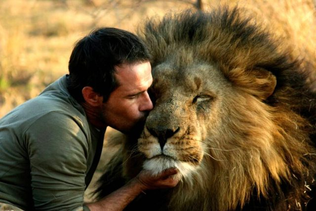 The Lion Whisperer In South Africa