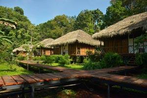 Sacha Lodge Image