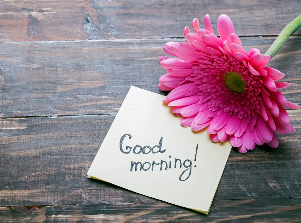 Witzige Guten Morgen Spruche Ideen Anderen Einen Schonen Tag Zu