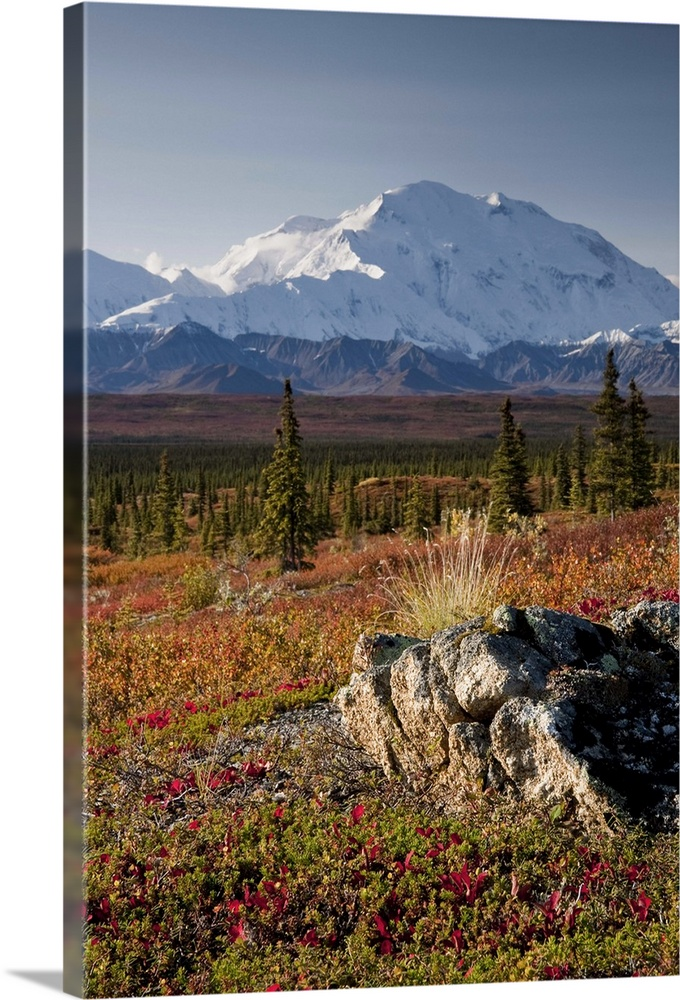 Scenic view of Mt  McKinley during Autumn Denali National Park     Scenic view of Mt  McKinley during Autumn Denali National Park Interior  Alaska