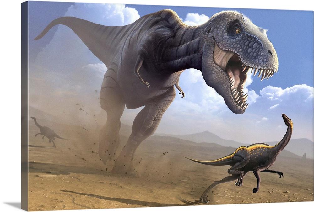 Image result for tyrannosaurus rex