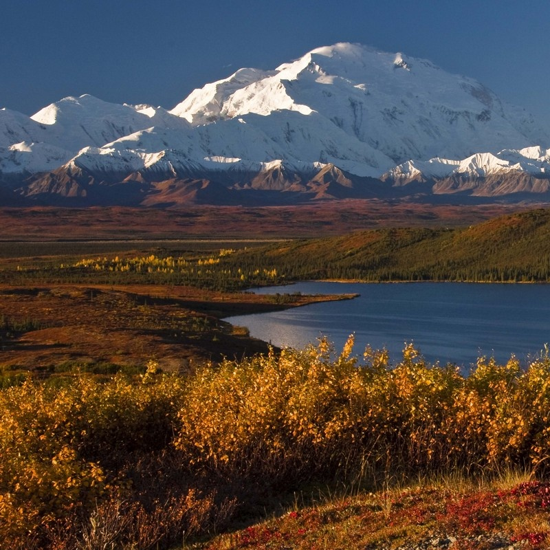 Scenic view of Mt  McKinley and Wonder Lake Denali National Park     Recently Viewed Clear Items