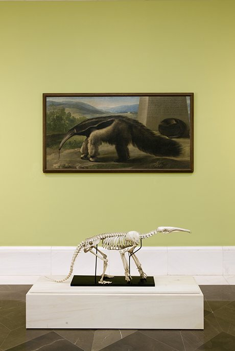 A Prado installation in front of the Antón Meng workshop's His Majesty's Anteater