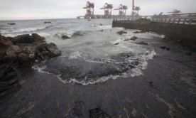 Oil spill washes ashore in the port of Dalian, China
