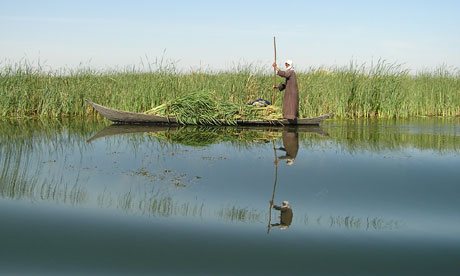Mesopotamian marshes of Iraq