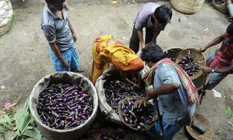 An Indian vendor sells aubergines at a market in Kolkata