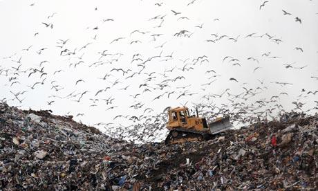 Damian blog : Seaton Meadows Landfill site in Hartlepool