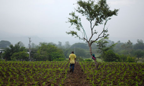 A farmer in El Salvador