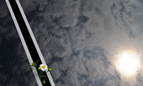EU policy on carbon targets and renewable energies : flower between two solar cell panels