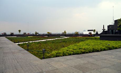 MDG : Roof garden in Mexico city : Azotea verde on Mexico City environment secretariat