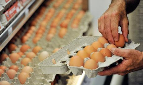 egg-us salmonella
