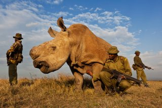 Brent Stirton South Afric 001