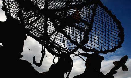 Fishing for prawns near Oban, Scotland